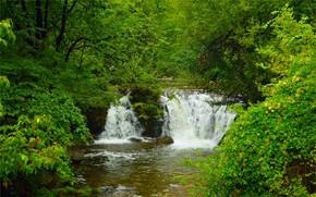 Картинка Природа, Водопад, Деревья, Nature, Waterfall, Trees