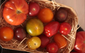 Картинка Корзина, Помидоры, Tomatoes