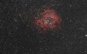 Картинка Единорог, в созвездии, Rosette Nebula, Туманность Розетка