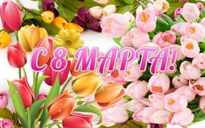 Картинка цветы, тюльпаны, 8 марта