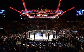 Картинка MMA, UFC, Cage
