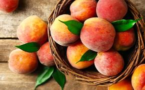 Обои фрукт, листья, корзина, персики