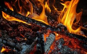 Картинка огонь, дрова, жар, пламя