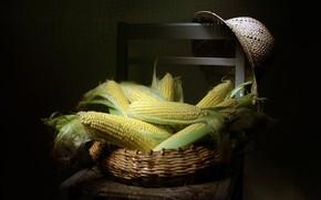Картинка шляпа, кукуруза, стул