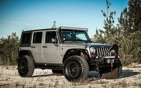 Картинка Oscar, with, Wrangler, Jeep, Edition, Mike, Smittybuilt