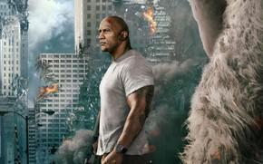 Обои огонь, горилла, катастрофа, фантастика, Рэмпейдж, дым, город, Дуэйн Джонсон, развалины, дома, фон, Dwayne Johnson, постер, ...