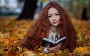 Картинка осень, взгляд, листья, настроение, листва, книга, рыжая, рыжеволосая, длинные волосы, Arina, Hakan Erenler