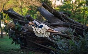 Картинка девушка, деревья, отдых, платье, Ludovica