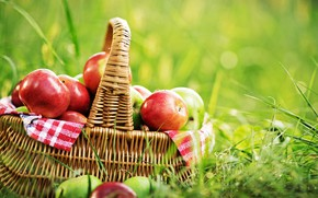 Картинка зелень, лето, трава, корзина, поляна, яблоки, фрукты, боке