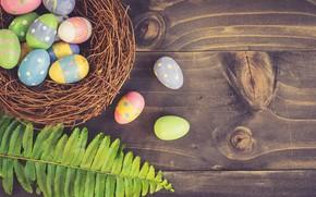 Картинка лист, яйца, пасха, гнездо, Праздник, папоротник