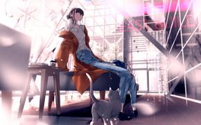 Картинка кот, девушка, аниме