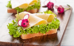 Картинка листья, сыр, хлеб, бутерброд, овощи, декор, салат, bread, cheese, vegetables, редис