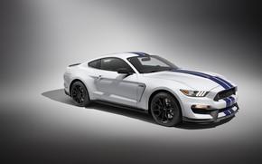 Обои Car, Shelby, GT350, Sportcar, Mustang