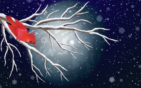 Картинка Зима, Минимализм, Птица, Снег, Луна, Ветка, Снежинки, Фон