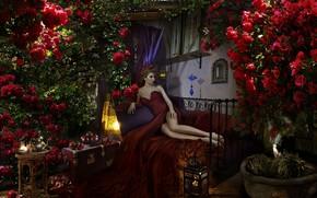 Картинка девушка, розы, платье, фрукты, ножки