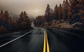 Картинка дорога, природа, вечер