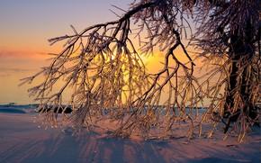 Картинка зима, снег, закат, лёд