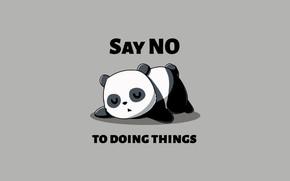 Картинка minimalism, sleeping, humor, simple background, Panda, say no