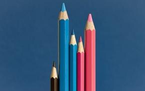 Картинка фон, цвет, карандаши, The happy family