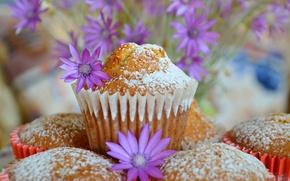 Обои кексы, Фиолетовые цветы, Пирожные, Purple flowers