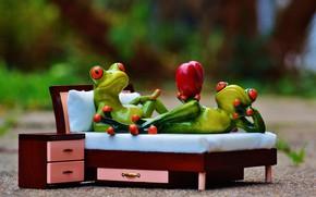 Картинка любовь, кровать, Лягушка, принц, сердечко, Леди