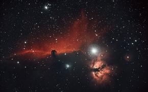 Обои космос, звезды, туманность, конская голова, Horsehead