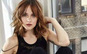 Картинка портрет, макияж, актриса, прическа, блузка, шатенка, сидит, фотосессия, брюки, позирует, в черном, у окна, Dakota …
