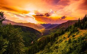 Картинка лес, небо, облака, закат, горы, Монтана, США, Montana
