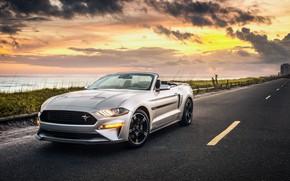Обои Ford, 2019, закат, California, Convertible, Mustang GT