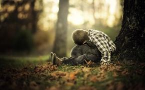 Картинка мальчик, осень, кролик