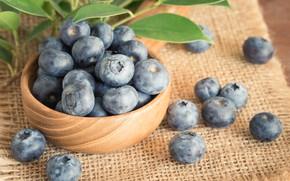 Обои ягоды, черника, fresh, blueberry, голубика, berries