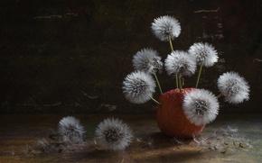 Картинка фон, яблоко, одуванчики, пушинки, цветение