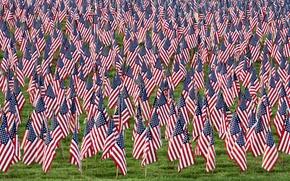 Обои поле, фон, флаги
