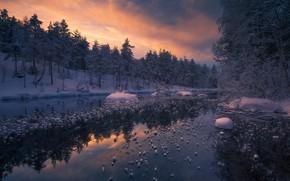 Обои Ringerike, лес, река, зима, Норвегия, Ole Henrik Skjelstad