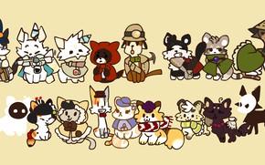 Картинка белый, свет, кошки, зеленый, темнота, перо, черный, коты, китай, аниме, шарф, почтальон, коричневый, накидка, anime, …