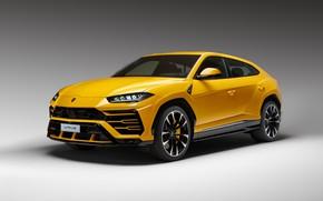 Картинка Lamborghini, yellow, 2018, Urus