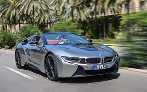 Картинка дорога, серый, движение, разметка, растительность, скорость, BMW, родстер, гибрид, 2018, i8, i8 Roadster