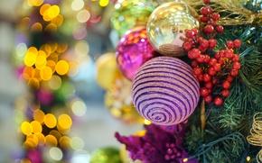 Картинка шарики, украшения, блики, ягоды, шары