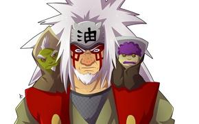 Картинка Naruto, frog, Naruto Shippuden, kanji, Jiraya, Shima, Fukasaku, by tysuyo, Jiraya sage mode, by vergildvs