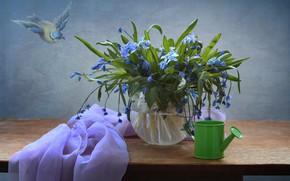 Обои подснежники, декор, пролески, леечка, натюрморт, цветы