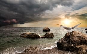 Обои камни, горизонт, небо, солнце, птица, фотошоп, гроза, море, дождь, чайка, берег, молния, тучи