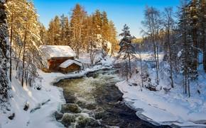 Картинка зима, лес, Финляндия, Kuusamo, Kitkajoki
