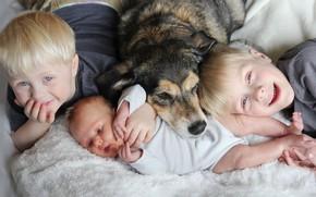 Картинка дети, дом, собака