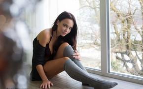 Картинка девушка, у окна, Ангелина, Angelina Petrova, Петрова