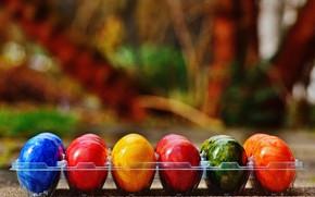 Картинка colorful, Пасха, rainbow, Easter, eggs, decoration, Happy, яйца крашеные