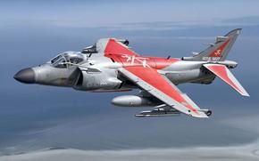 Картинка British Aerospace, Королевские ВМС, Sea Harrier, Vertical Take-Off and Landing, VTOL, британский палубный истребитель-бомбардировщик, Самолёт …