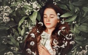 Картинка цветы, сон, девочка, длинные волосы, закрытые глаза, спящая девочка, Kasia Kowalak