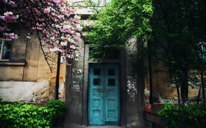 Картинка деревья, дом, дверь, Cornelia Pavlyshyn