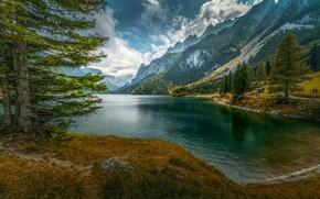 Обои горы, ель, вода, озеро