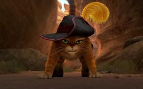 Обои Кот в шляпе, рыжий кот, усищи, злобный взгляд, морда, Кот в сапогах, ущелье, злость, нападение, ...